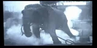 Electroplixia Elephant