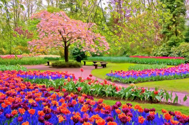 spring-season-nadia-sanowar
